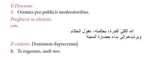 Pope Francis x 30 Arabic prayer